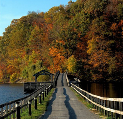 cheat lake park trail with fall leaves