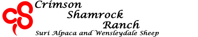 crimson shamrock ranch logo
