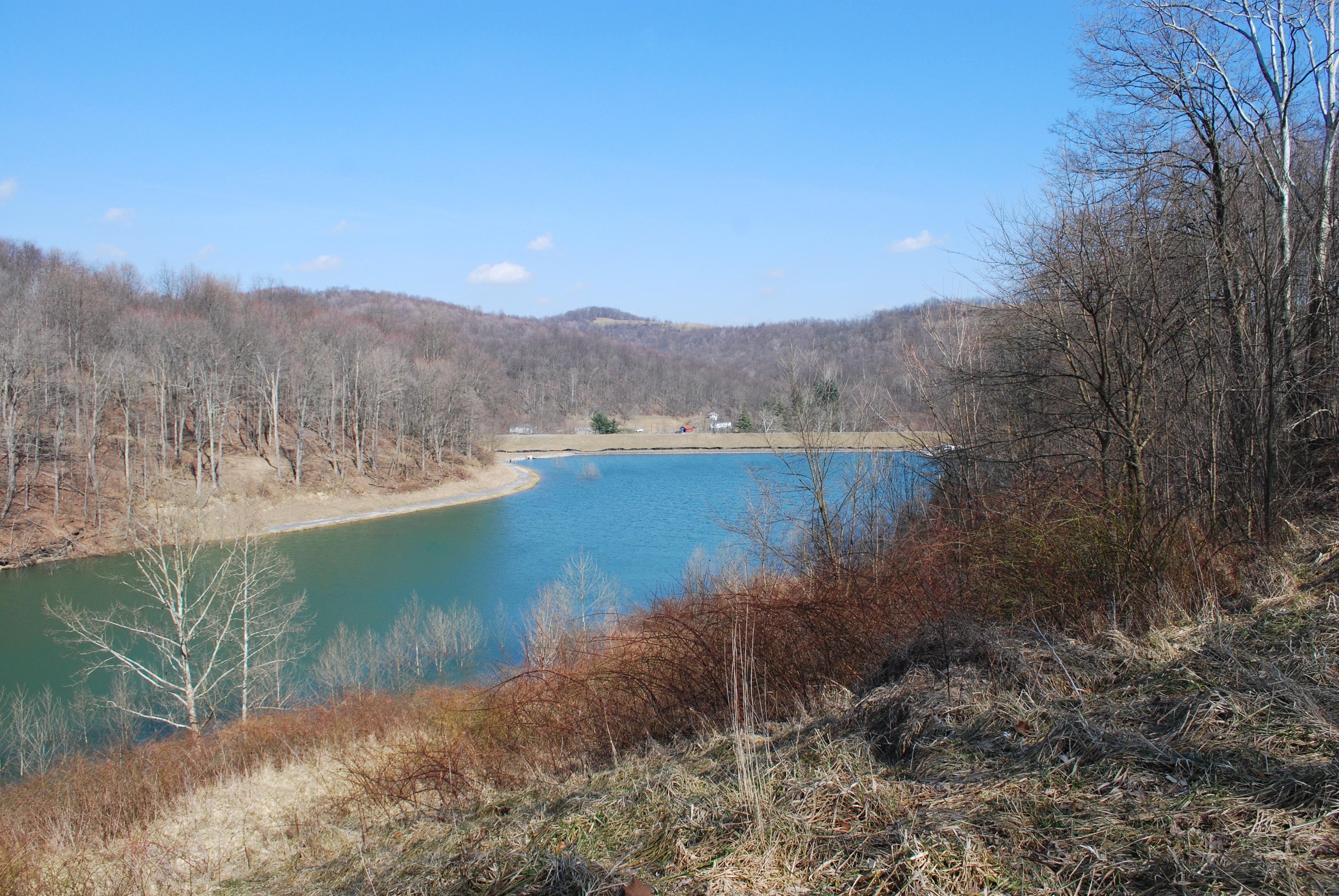dixon lake and mason lake