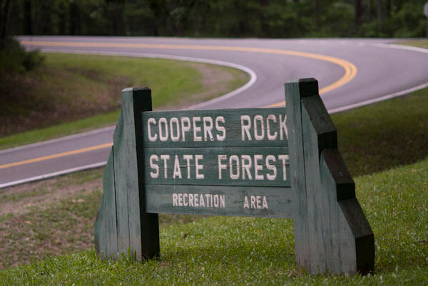 Coopers Rock State Forest sign