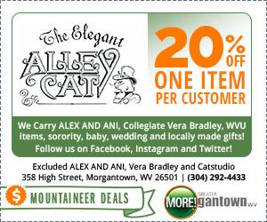 The Elegant Alley Cat