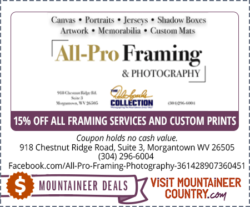 All-Pro Framing & Photography